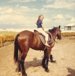 1967 cheval brun sit